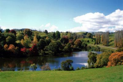 Hackfalls Arboretum in Autumn