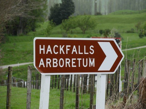 Hackfalls Arbor Camp 2019