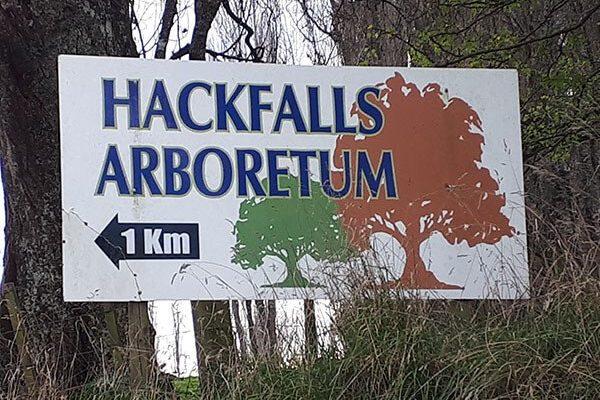 Hackfalls Arbor Camp 2020