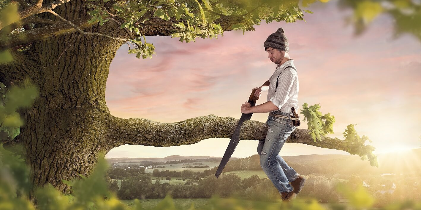 Could You Be Harming Your Trees