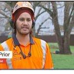 Kayne Prior Arborist Pro Climb Newshub NZ