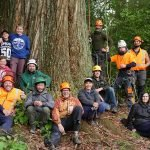 Hackfalls Arbor Camp 2017