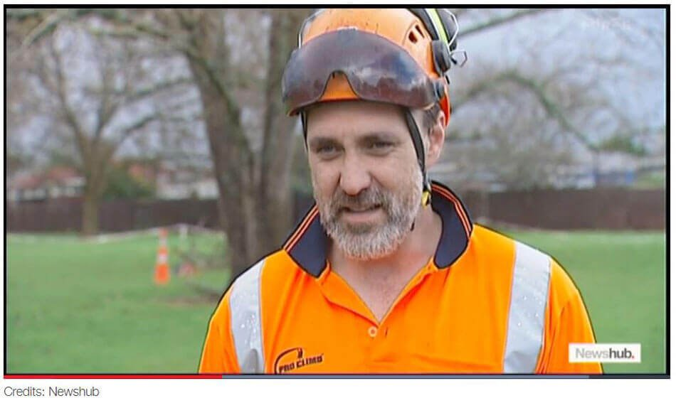 Will Philps Arborist Pro Climb Newshub NZ